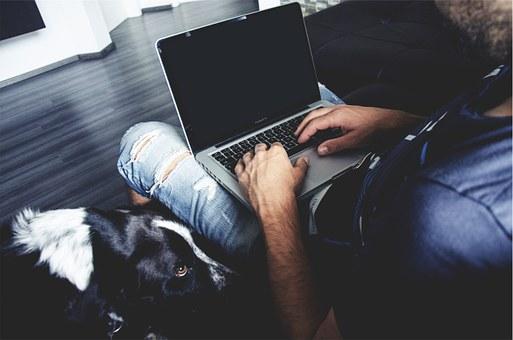 保護犬のために自宅で仕事をする人