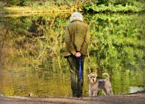 年配の女性とお散歩する犬