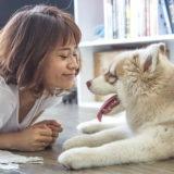 【犬の資格・検定】しつけの勉強をして愛犬との暮らしの質を向上する