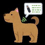 マイクロチップを埋め込んだ犬